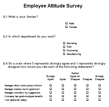 Employee surveys are they any good the empty head for Attitude survey template